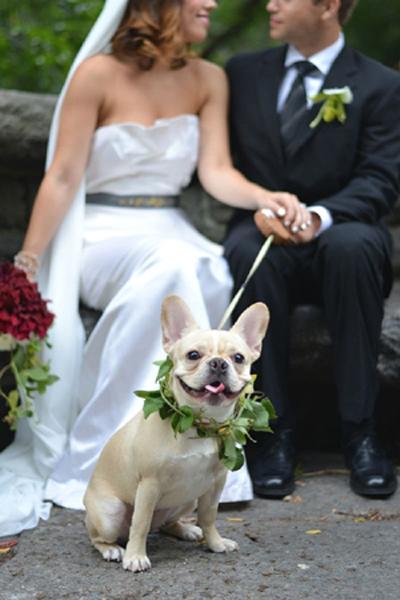 Grecian Look, Photography from www.jessicaschmitt.com